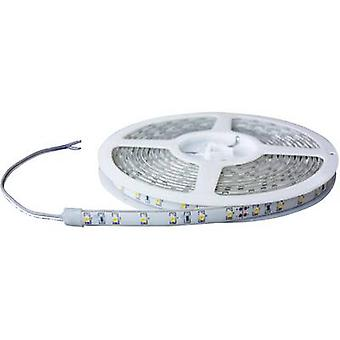 Barthelme 51618411 51618411 LED strip åbne kabel ender 24 V 1 m
