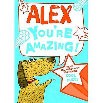 Alex - vous êtes incroyable!: Lisez tout sur pourquoi tu es un mec Cool!