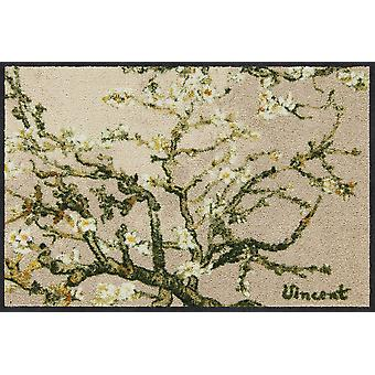 Salonloewe kynnys matto Almond Tree beige 50 x 75cm pestävä lika matto