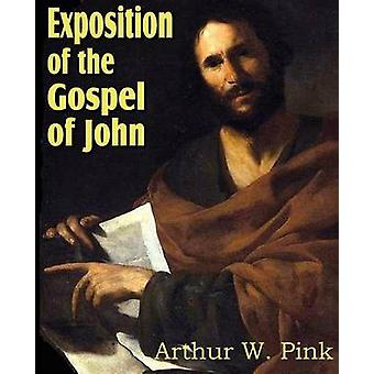 Exposition of the Gospel of John by Pink & Arthur W.