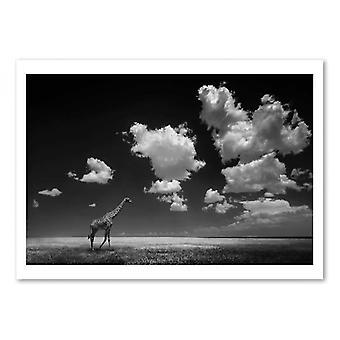 Art-Poster - Via con le Nuvole - Alberto Ghizzi Panizza 50 x 70 cm