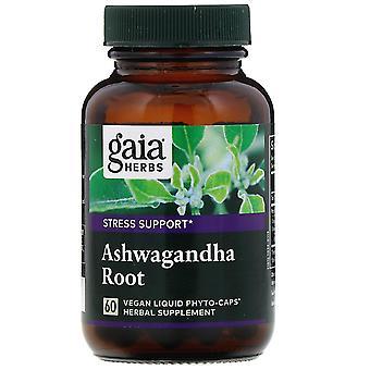 Gaia Herbs, Ashwagandha Root, 60 Vegan Liquid Phyto-Caps