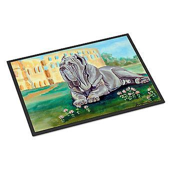 Caroline's Treasures Mastino Napoletano Zerbino interno o esterno, 24 x 36, Multicolor