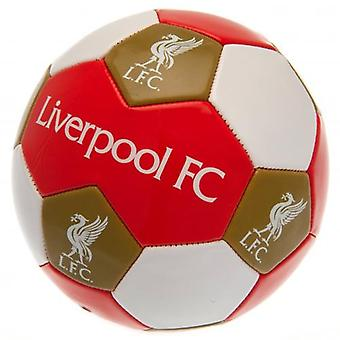 Liverpool FC Football Taille 3