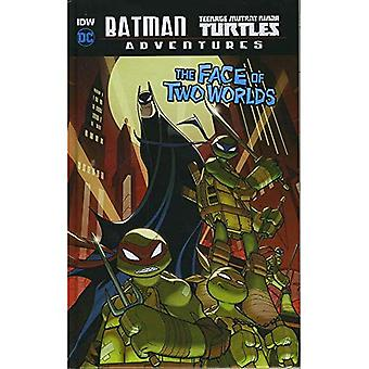 Kasvot Two Worlds (DC Comics: Batman / Teenage Mutant Ninja Turtles Adventures)