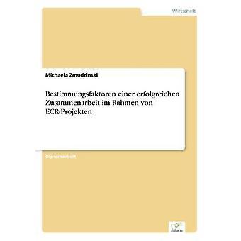 Bestimmungsfaktoren einer erfolgreichen Zusammenarbeit im Rahmen von ECRProjekten av Zmudzinski & Michaela