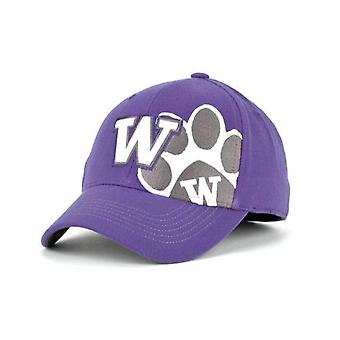 Washington Huskies NCAA TOW -Quot;Big Ego-quot; Stretch Fitted Hat