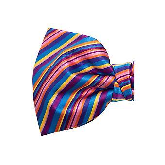 Dobell Mens Rainbow Bow Tie Pre-Tied
