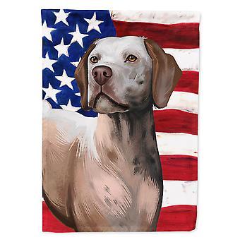 Braque du Bourbonnais American Flag Flag Canvas House Size