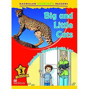 Macmillan Childrens Readers Big and Little Cats Level 3 by Coleen Degnan Veness