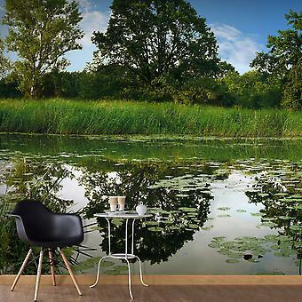 Fotobehang - The Magic Pond