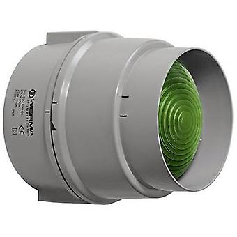 Werma Signaltechnik Light 890.200.00 Green Non-stop light signal 12 V AC, 12 V DC, 24 V AC, 24 V DC, 48 V AC, 48 V DC, 110 V AC, 230 V AC
