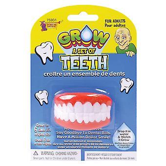 Cultiver vos propres dents