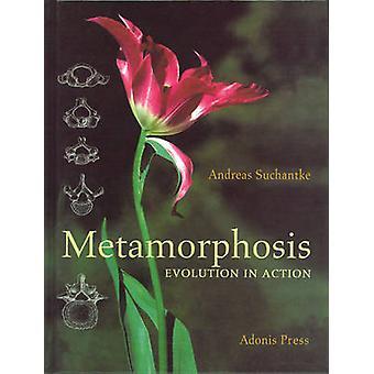 Metamorphose - Evolution in Aktion von Andreas Suchantke - Norman Skil