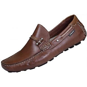 Front Shoes Emerson Leather Brown Loafer