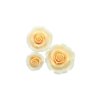 SugarSoft Ombre Peach Sugar Soft Roses - Mixed Pack Of 38mm, 50mm, 63mm - Boxed 12