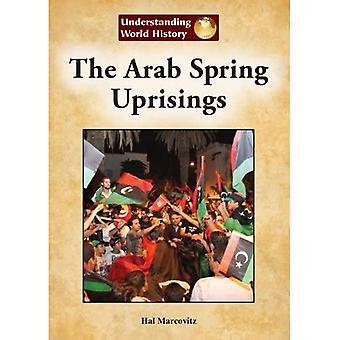 The Arab Spring Uprisings (Understanding World History (Reference Point))