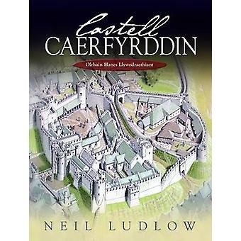 Castell Caerfyrddin - Olrhain Hanes Llywodraethiant par Neil Ludlow - A