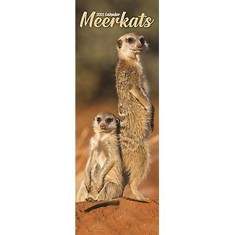 Meerkats 2021 Slim Calendar by Created by Avonside Publishing Ltd