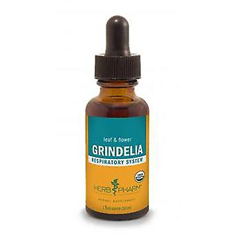 Herb Pharm Grindelia Extract, 4 Oz