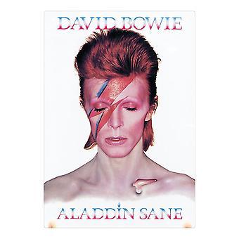 David bowie - aladdin sane tin sign