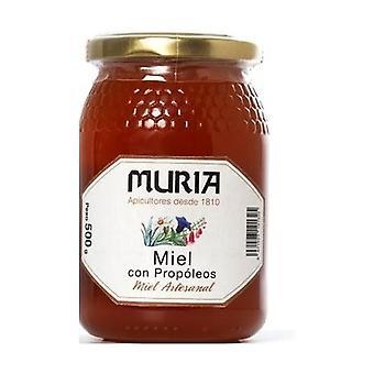 Honey propolis 500 g