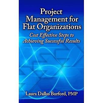 Project Management for Flat Organizations - Cost Effective Steps to Ac