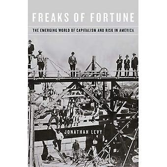 Freaks of Fortune: der entstehenden Welt des Kapitalismus und Risiko in Amerika