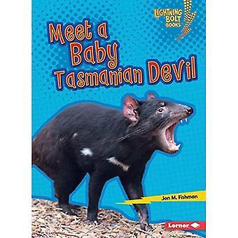 Träffa en Baby tasmanska djävulen (Lightning Bolt böcker Baby australiska djur)