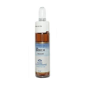 FM Beech (Beech 10 ml of floral elixir