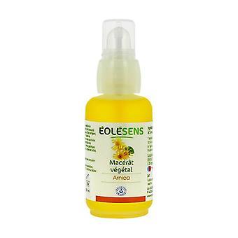 Vegetable oil Arnica (macerat) BIO 50 ml oil