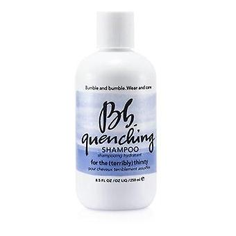 Bb. Quenching Shampoo (For the Terribly Thirsty Hair) 250ml or 8.5oz