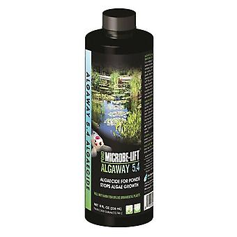 Microbe-Lift Algaway 5.4 for Ponds - 8 oz