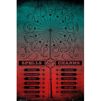 Harry Potter - Spells and Charms Poster Poster Print