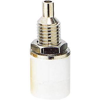 BKL elektroniska 072312 Jack socket Socket, vertikal vertikal Pin diameter: 4 mm vit 1 dator
