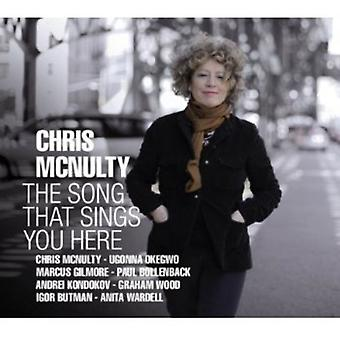 Chris McNulty - Song That Sings You Here [CD] USA import