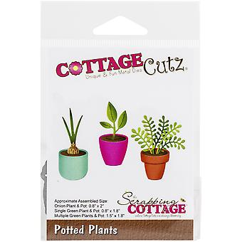 Scrapping Cottage Cutting Dies - Potted Plants