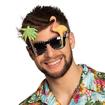 Hawaiian Party Brille Fancy Dress Zubehör