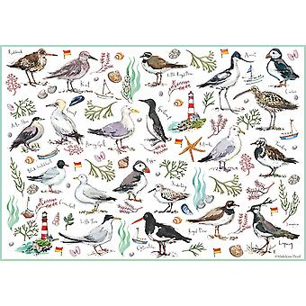 Otter House Seabirds Jigsaw Puzzle (500 Pieces)