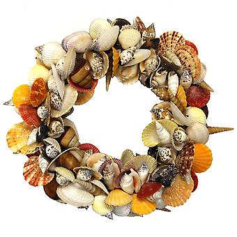 Colorful Natural Mixed Seashell Cluster Accent Wreath 12.5 Inch Diameter
