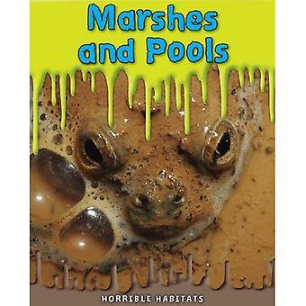 Marshes and Pools (Horrible Habitats)