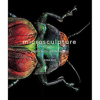 Microsculpture: Porträts von Insekten