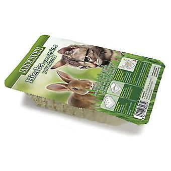 Arquivet Grass Cats In Tray (Cats , Cat Nip, Malt & More)