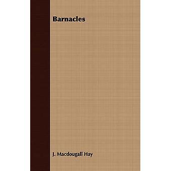 Barnacles by Hay & J. Macdougall