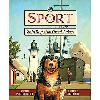 Sport: Scheepshond van de Grote Meren