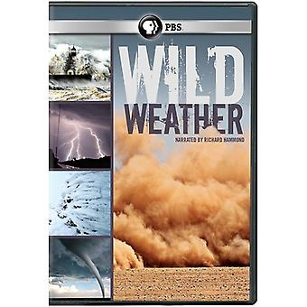 Wild Weather [DVD] USA import