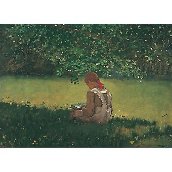 Winslow Homer - Reading by the Brook Poster Print Giclee