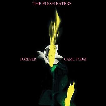 Flesh Eaters - Forever Came Today [CD] USA import