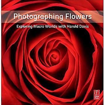 Fotografera blommor: Utforska makro världar med Harold Davis