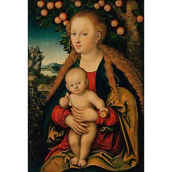 הבתולה והילד מתחת לעץ התפוח, לוקאס קראנך, 60x40cm